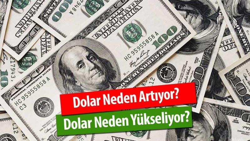 Dolar Neden Artıyor? Dolar Neden Yükselir? -2020